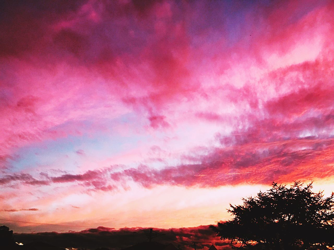Sky And Clouds Sky Sky_collection Sunset Nice Skylovers Sydney IPhone IPhoneography Pink Outdoors