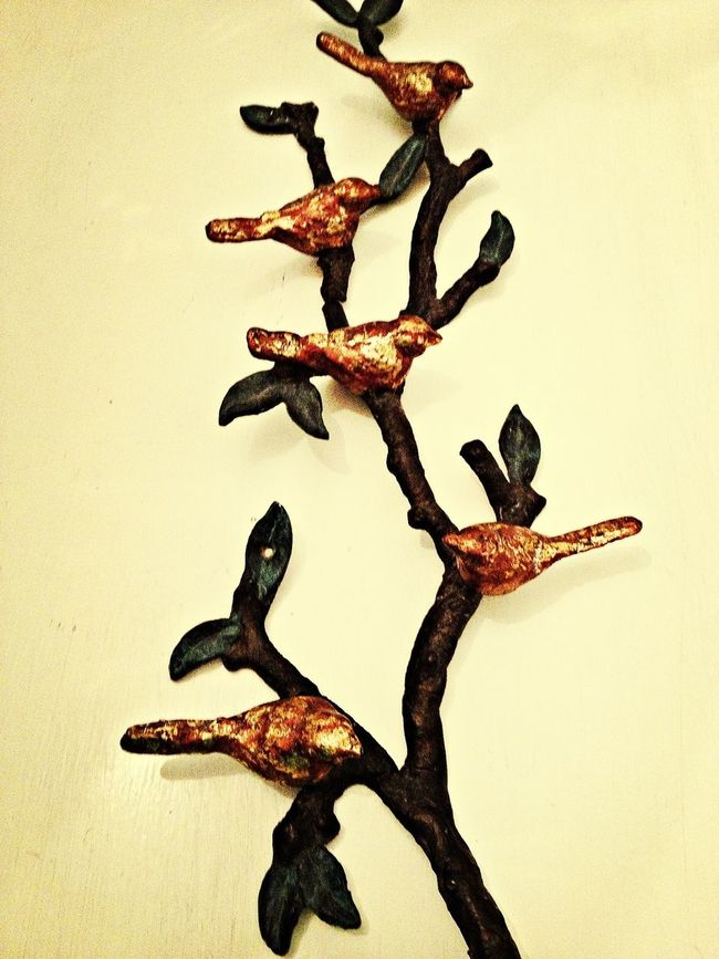 BIRDS OF A FEATHER.... Taking Photos