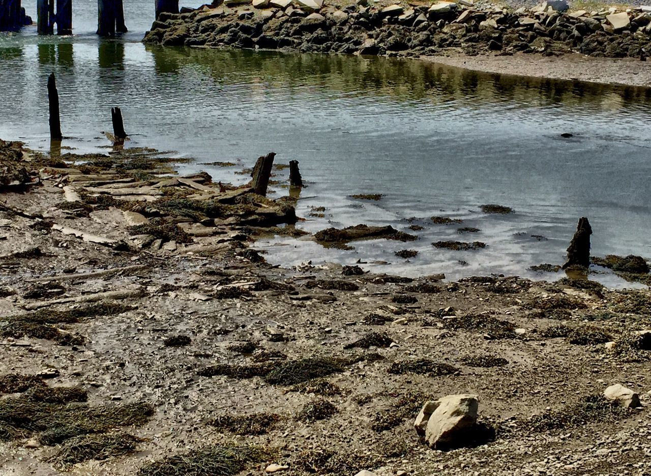 Tidesout Pilings Water Maine