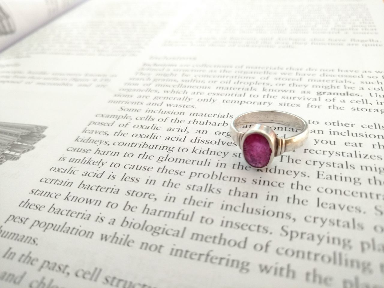 How you look at something is all it matters..xD Mothersgift Rubyring Colourcontrast Boredofstudying