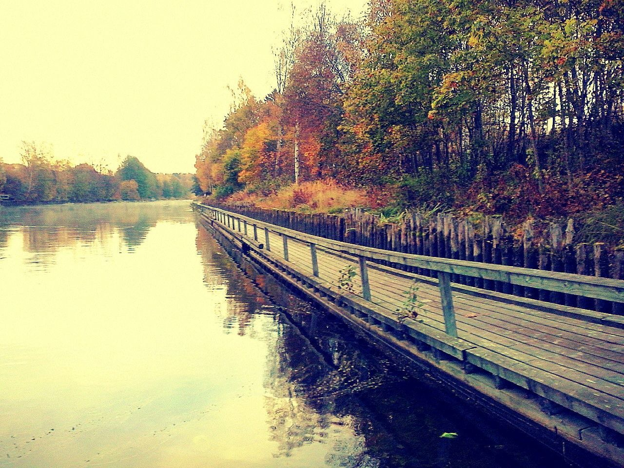 tree, autumn, nature, water, beauty in nature, tranquil scene, river, no people, tranquility, outdoors, change, scenics, day, built structure, sky