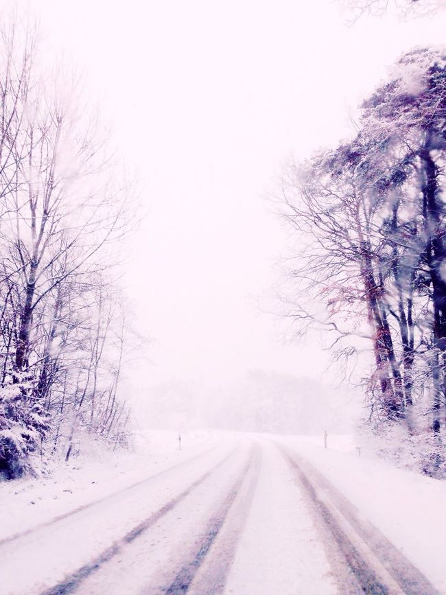 So beautiful ❄️⛄️ Snow Winter Winter Wonderland Nature Beautiful On The Road