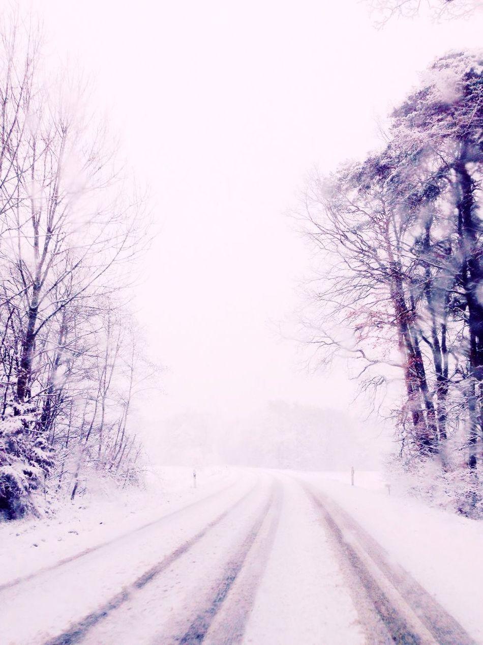 So beautiful ❄️⛄️ Snow Winter Winter Wonderland Nature Beautiful On The Road