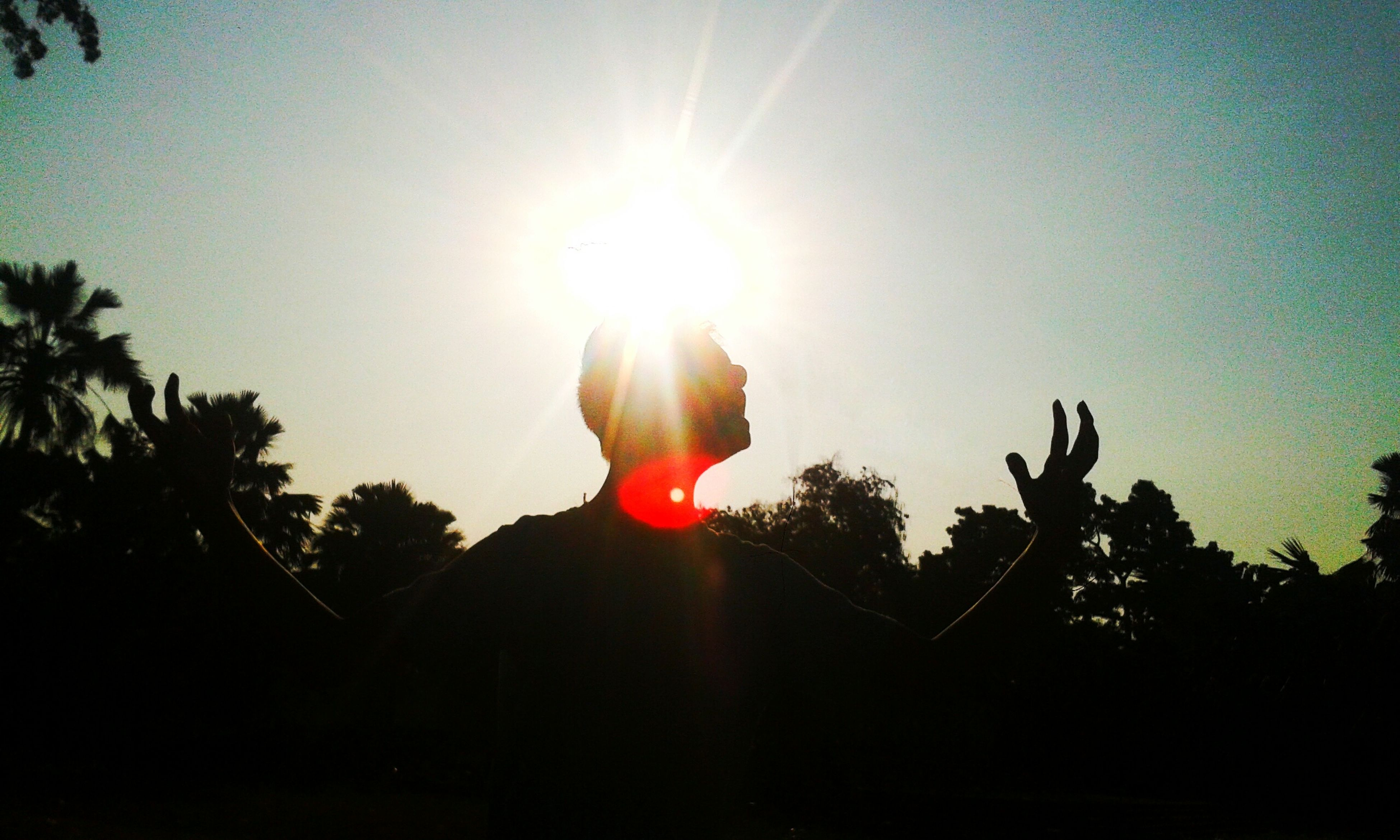 sun, lens flare, sunlight, sunbeam, tree, real people, sky, one person, leisure activity, outdoors, nature, day, adult, people
