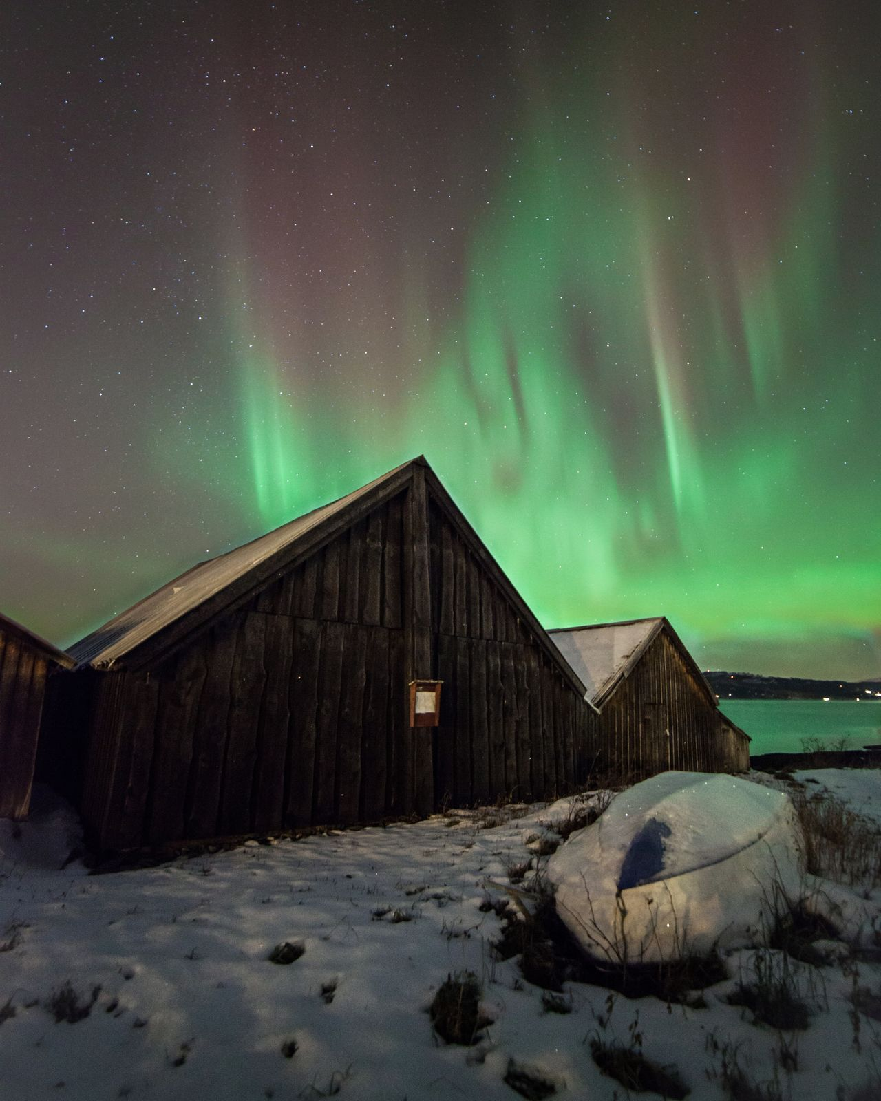 Aurora in the sky over Muruvik NorwayTrondheim Norway Aurora Borealis Aurora Norge Nature Night Photography Stars Northern Europe Night Muruvik Visitnorway Nordic Light