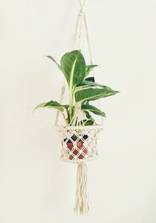 Oldiesbutgoldies Home Interior Island Life Tree Nature Summer Time  Summeressential Macrame Pattern Homesweethome Homedecoration Home Sweet Home Homedetails Homestyle Homeiswheremyheartis