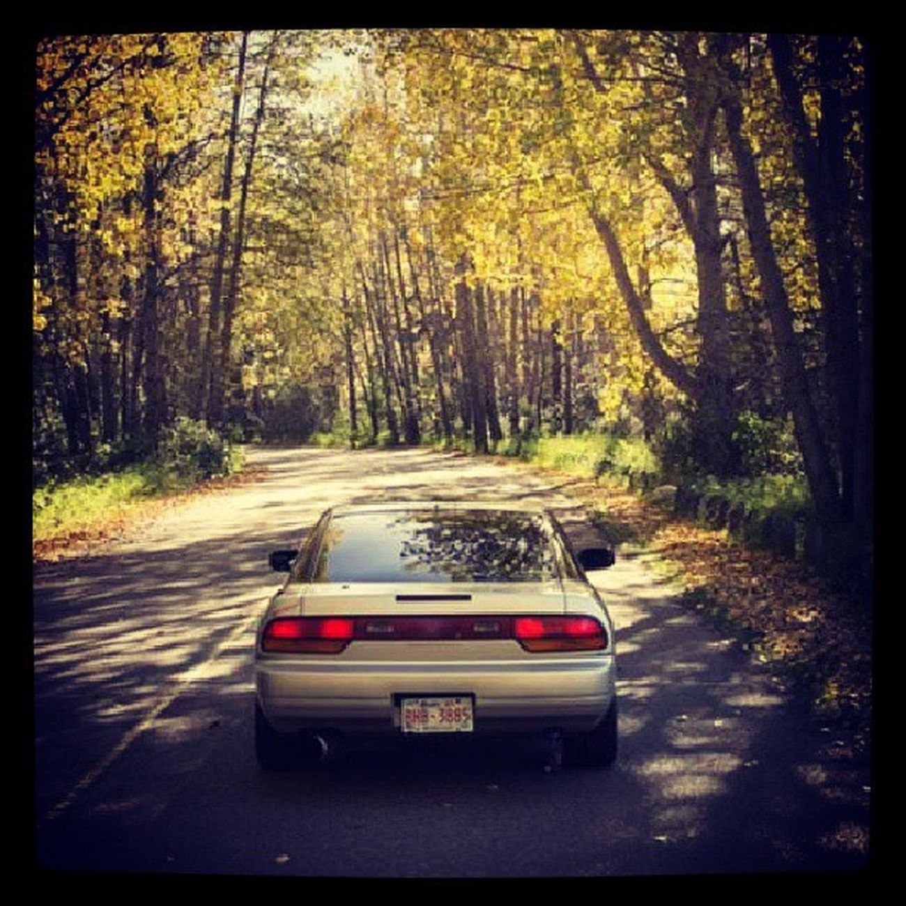 My 180sx out and about I really like this photo I took Nissan 180sx Jdm Turbo clean fall gold domo
