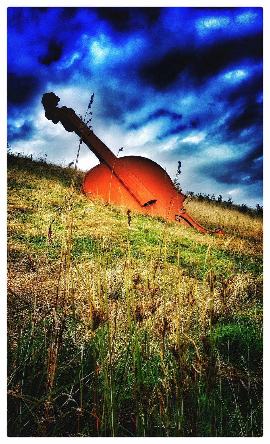 Buried Bass Landscapes Musical Instruments ArtWork