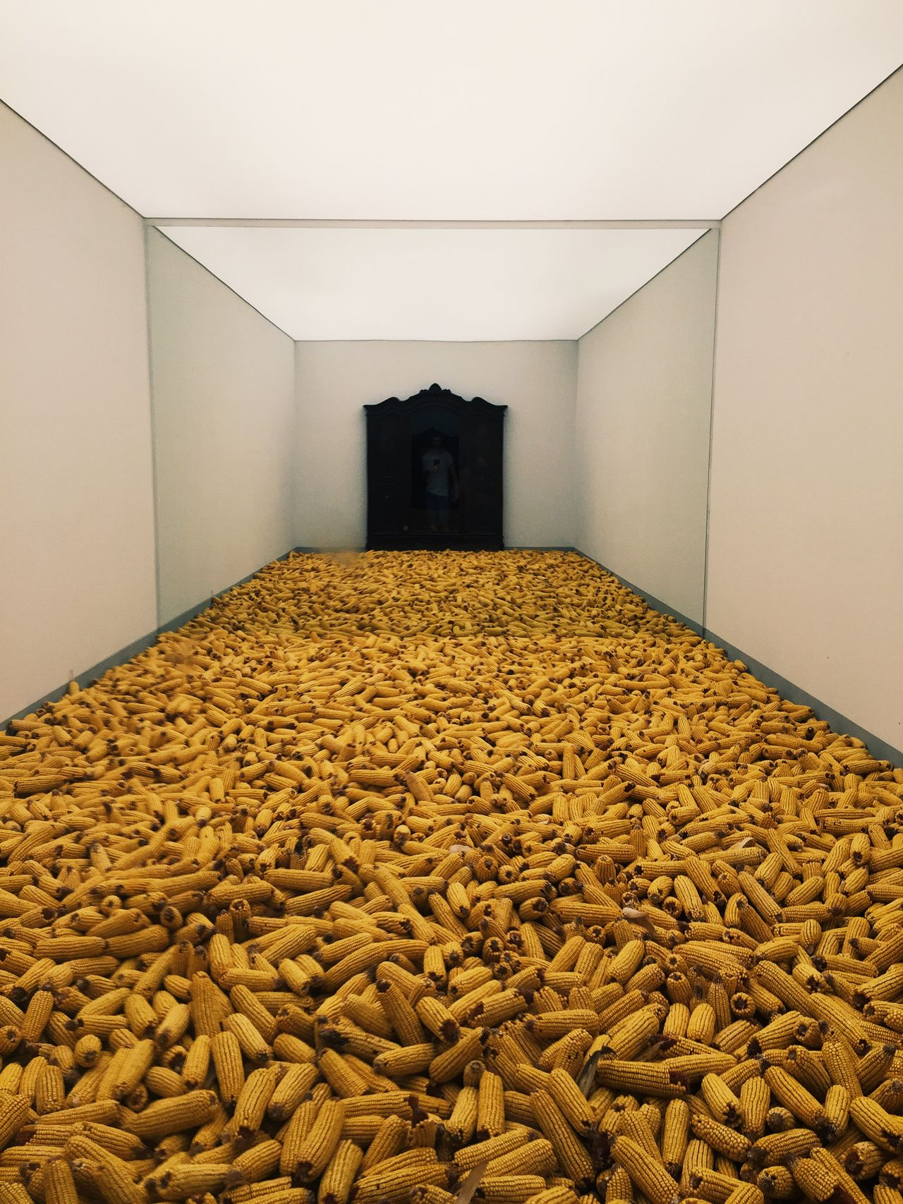 Exhibition Venicebiennale2015 Art Taking Photos Corn Selfie ✌ La Biennale Di Venezia Mirrorselfie Minimalism From Vienna To Milan