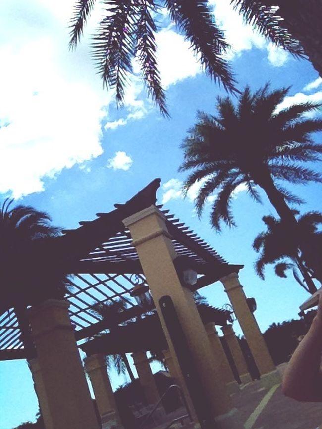 Enjoying Life