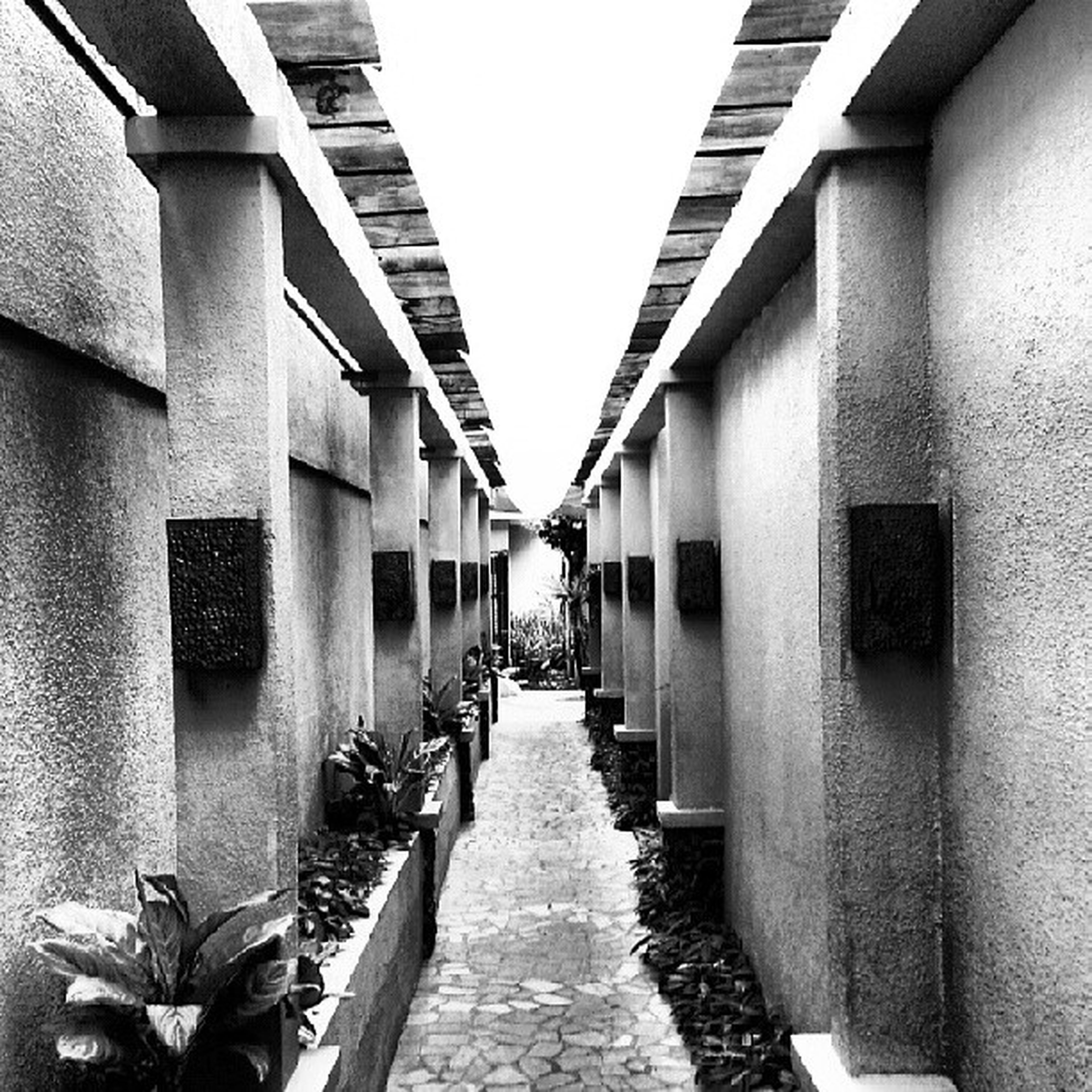 architecture, built structure, the way forward, building exterior, diminishing perspective, narrow, vanishing point, building, walkway, alley, in a row, footpath, pathway, residential building, cobblestone, long, empty, residential structure, street, day
