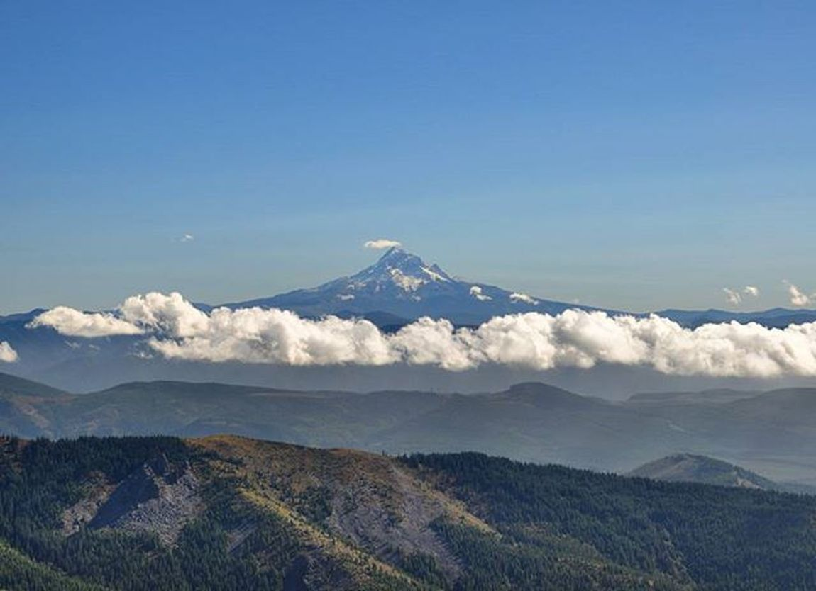 Mt Hood from the Silver Star peak. MtHood Washington Washingtonstate Evergreenstate Silverstarmountain Mountain PNW Pacificnorthwest Visitwashington Northwest Upperleftusa Adventure Golivexplore Theoutbound Pnwcollective