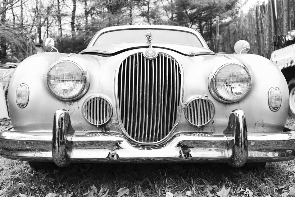 """""""Lost Metal Souls"""" part2 (yes she is rotting in a junk yard) Lost Metal Souls Eye4photography  EyeEm Best Shots - Black + White Ladyphotographerofthemonth Bnw_junkie Old Car Junkie Black And White Getting Inspired EyeEm_abanonment Monochrome"""