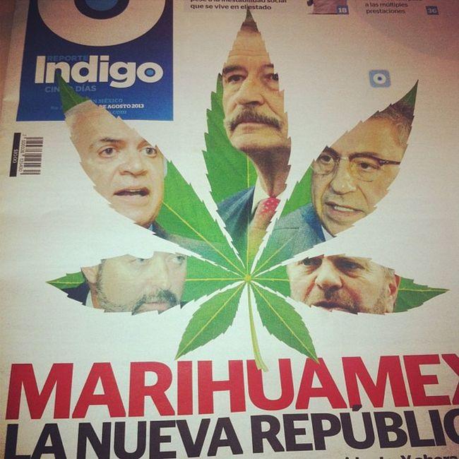 De hace unos meses Weed Mariguana Legalize Mexico president presidente fox indigo news newspaper