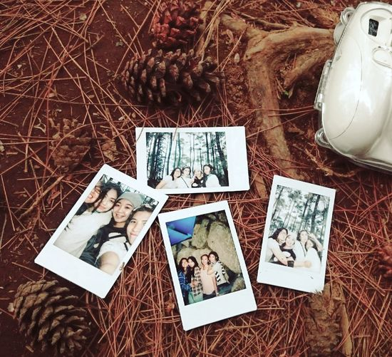 Take a picture in every moment with your besties ❤❤ Taking Photos Cheese! Enjoying Life Bandung, West Java Lembang Holidays This Is Indonesia Capture The Moment Friendship EyeEm Indonesia Mountain Taman Grafika Pinetrees Polaroid