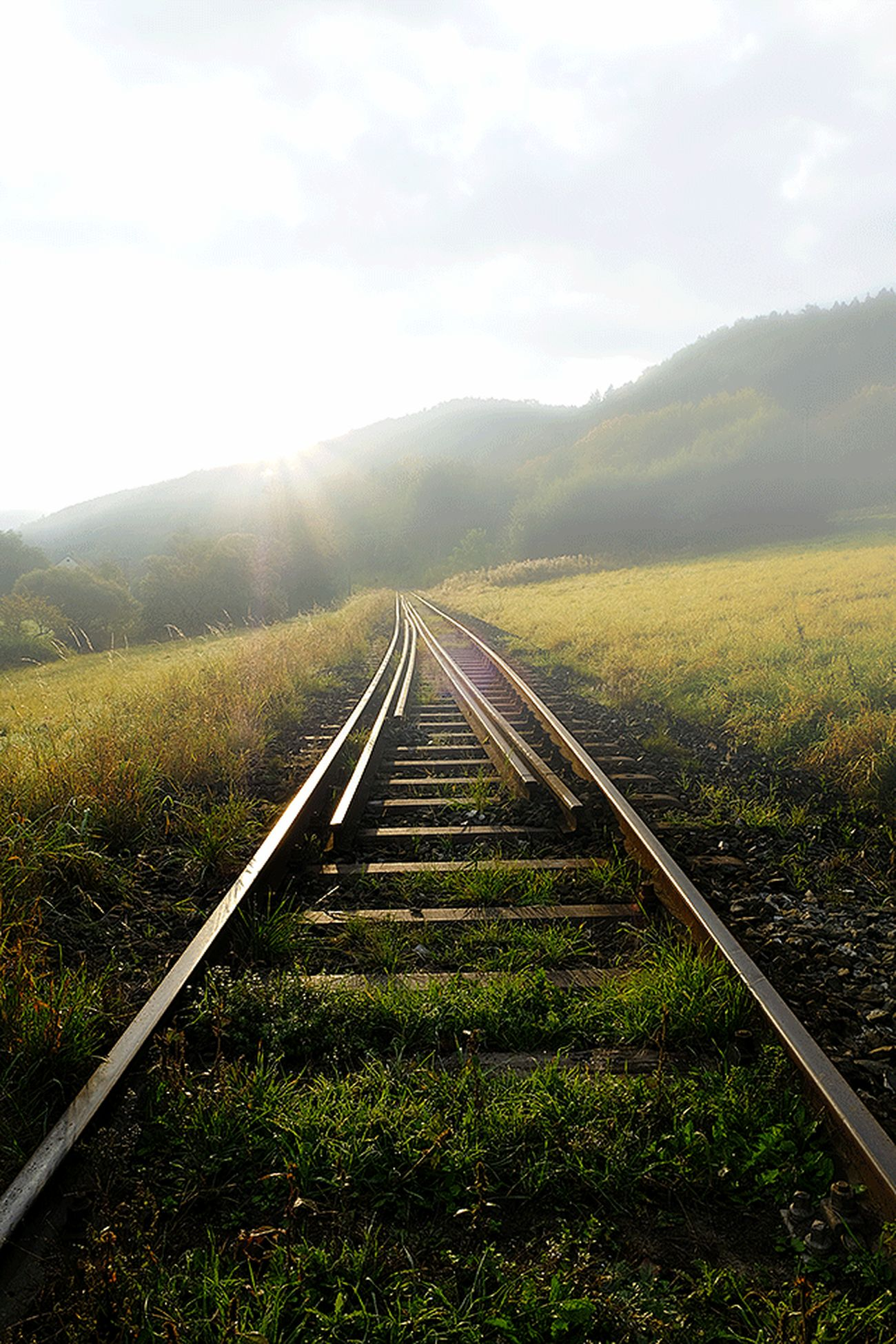 Railroad to nowhere Landscape Field Sky Tranquility Grass Mountain Beauty In Nature Diminishing Perspective Nature The Way Forward Cultivated Land Scenics Crop  Train Travel Rail Transportation Transportation Hanging Out Taking Photos Day Outdoors Journey Sunshine Cloud Foggyday