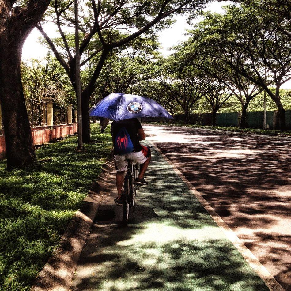 Umbrellas Umbrella☂☂ One Person Watching Umbrella EyeEm Gallery Umbrella Street Illuminated Eye4photography  Streetview Bycicle Ride