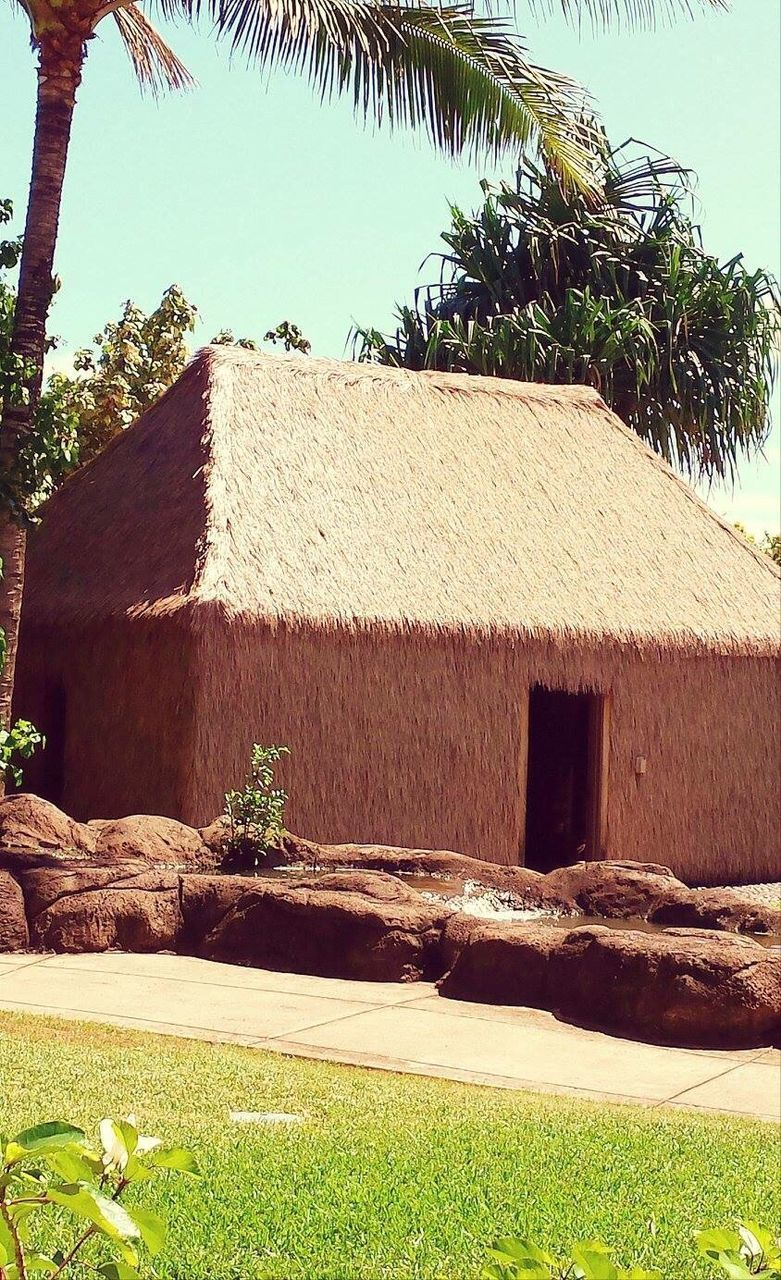 architecture, built structure, building exterior, day, house, thatched roof, outdoors, no people, sunlight, tree, nature, grass, palm tree, sky, clear sky, beauty in nature