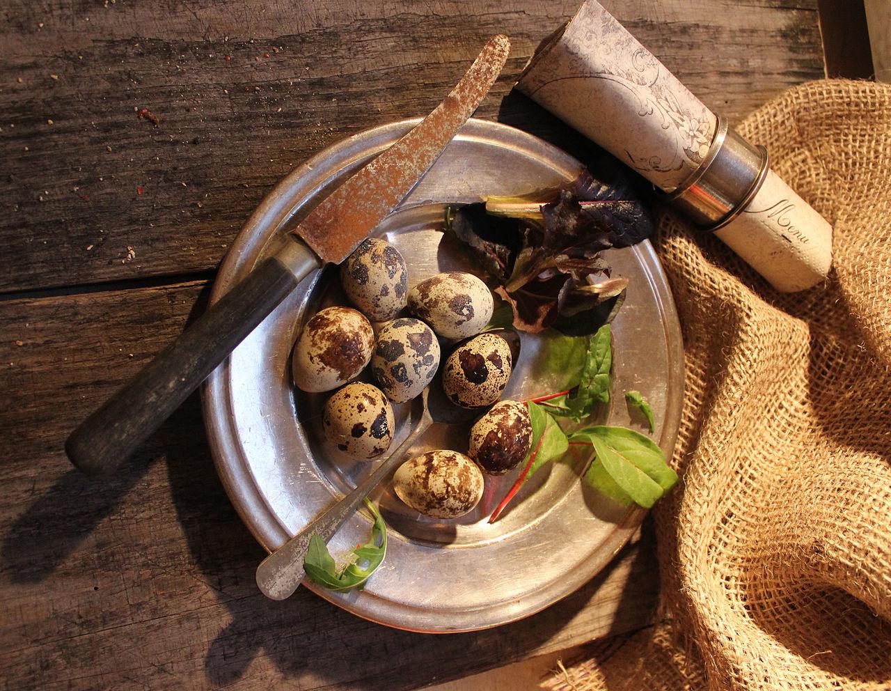 Bowl Eggs Food No People Quail Silver Dish Stillife Table Water Wood - Material