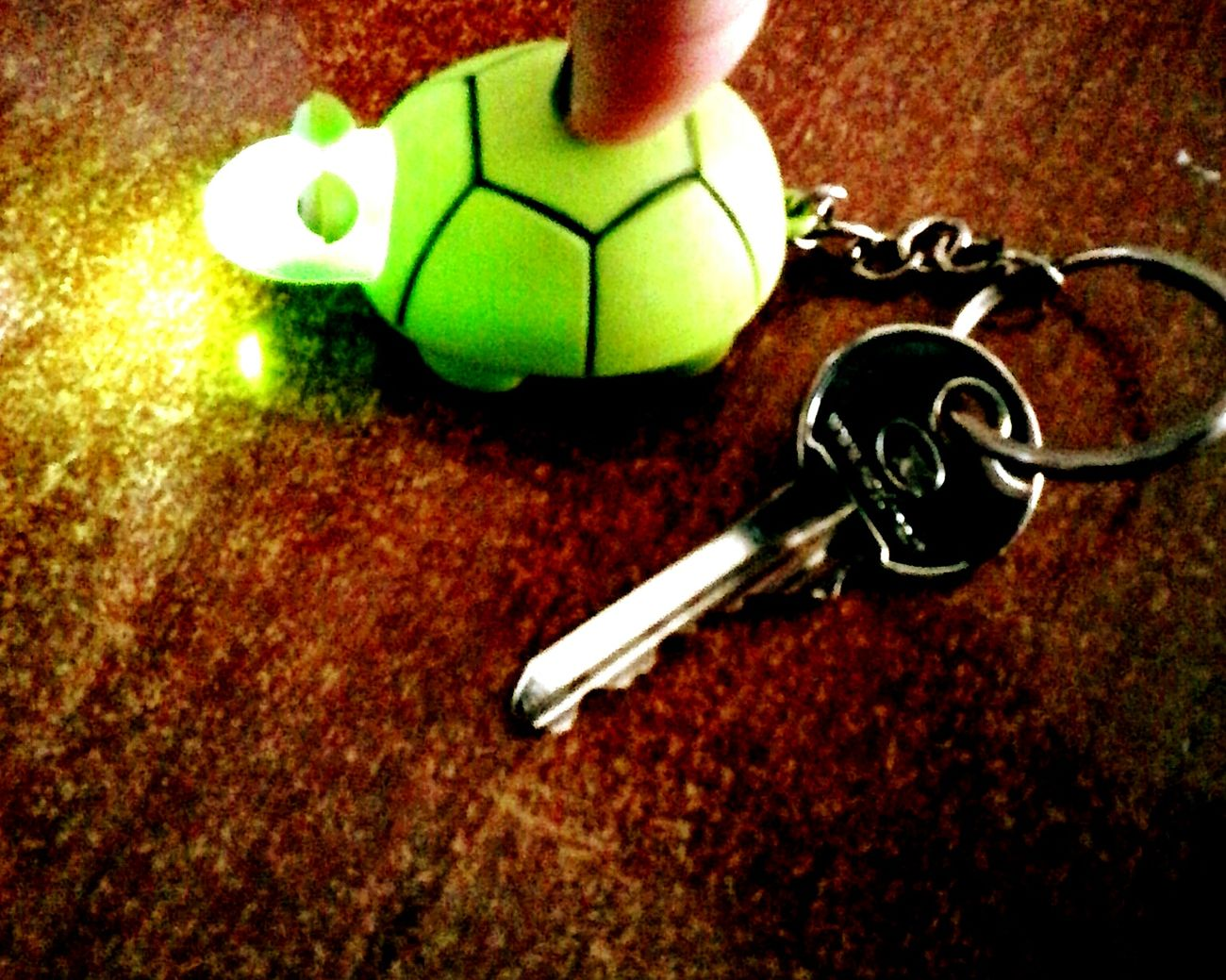 Keys Keychains  Turtles(: FUNNY ANIMALS Taking Photos Mobile_photographer BORED! Green Light