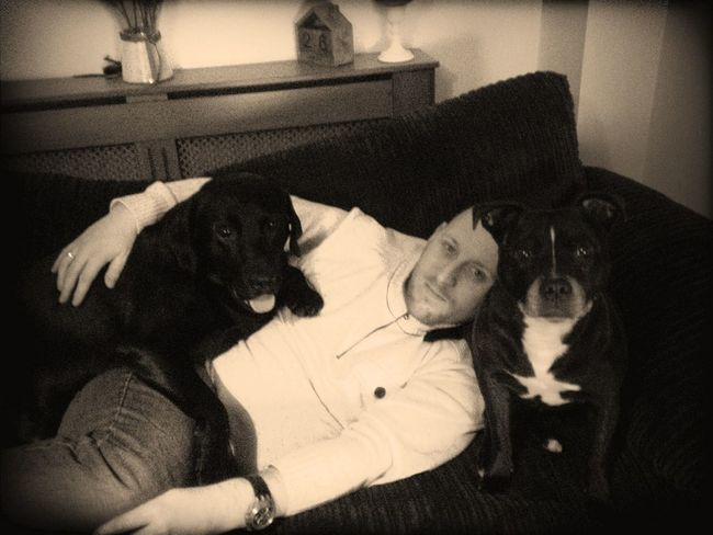 Dogs And Me