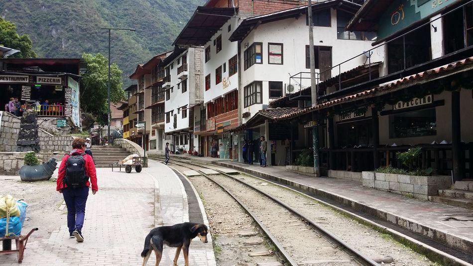 Travelling Solo South America Train Tracks Architecture Macchu Pichu Travel