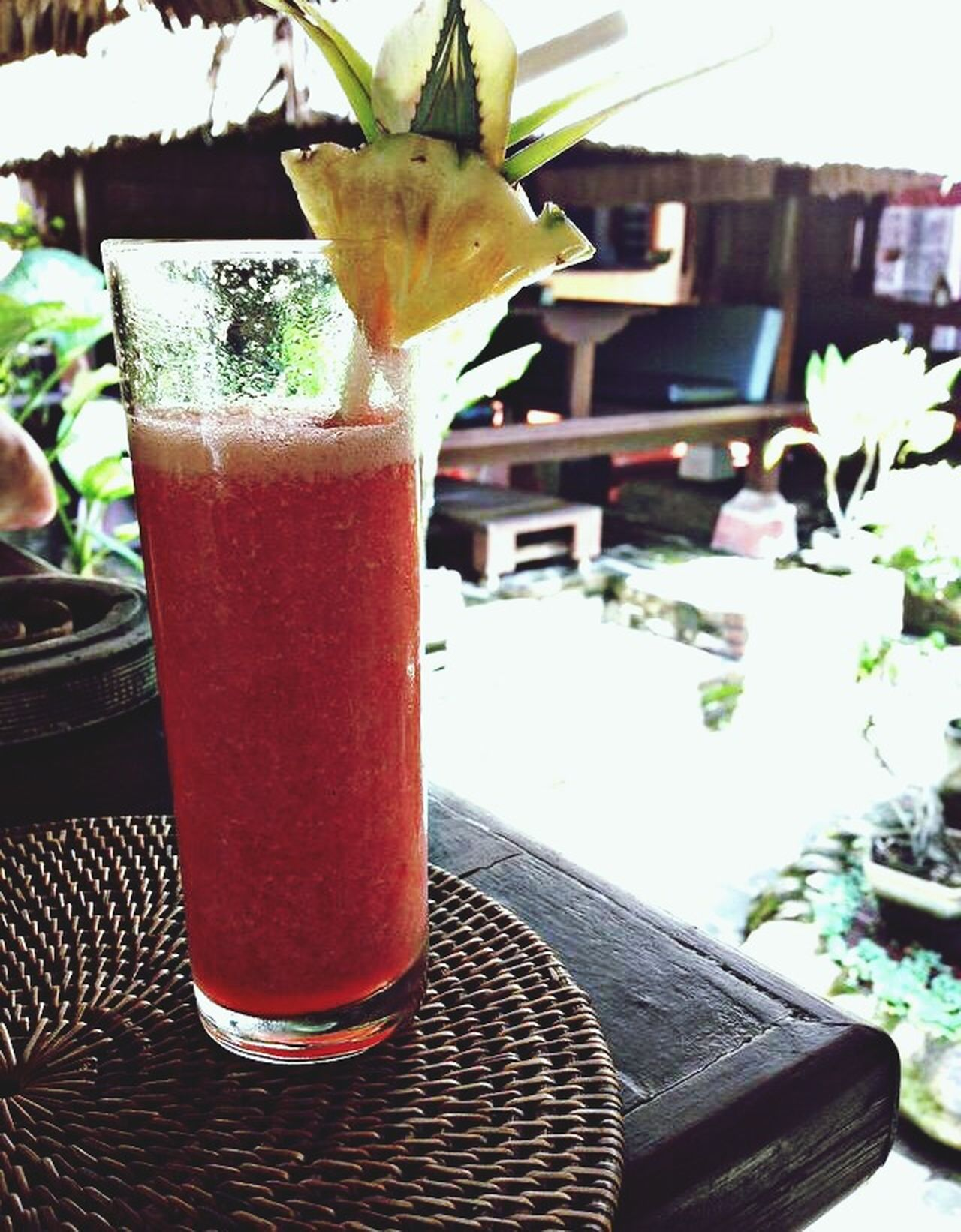Tropical Holiday Cocktail Vacation