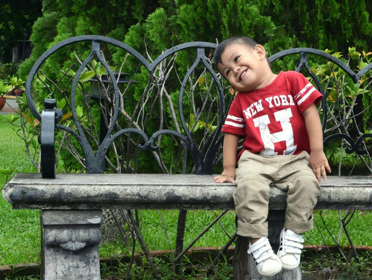 Beautiful stock photos of boy, Bench, Bush, Casual, Childhood