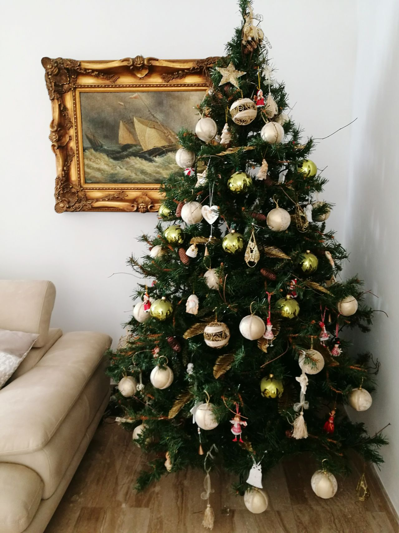 Oh Christmas tree Christmas Christmas Tree Tree Living Room Celebration Decoration Christmas Decoration Indoors  Pinaceae Christmas Ornament Christmas Present Plant Holiday - Event Coniferous Tree No People Home Interior Fir Tree Domestic Life Close-upNatale 2016 Tradition Fir Tree Natale  Holiday Season Day