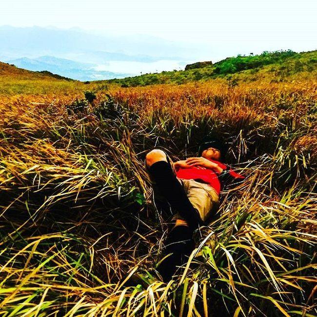 "Walang kaeffort-effort na Tanaga. 😉 BUNDOK NG KIDLAT Tuktok ng ""Bundok Kidlat"" Kapara ay ang dagat. Ganda'y bato-balani Puso ay nabighani. Mountainlife Mountaineering Mountains Outdooradventurephotos Pinoymountaineer Outdoorlife Outdoors Poetrycommunity Poetry Philippinepoetry Travelph TourismPH Turismo Choosephilippines Itsmorefuninthephilippines Grassland Grasslands Seaofgrasses Grassscape LNT Leavenotrace Climbwithattitude Teamderechopa"