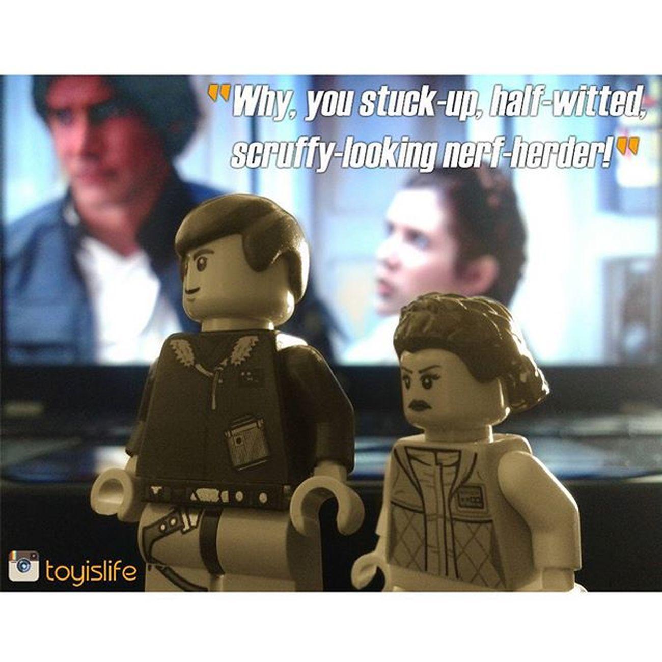 """Who's scruffy looking?"" Starwars Starwarstoys Legostagram LEGO Legolove Legofan Afol Han Solo Hansolo Leia Princess Leiaorgana Princessleia Rebels Smuggler Toyaddiction Love Lovehate Toyfun Sillythings Toyographer Toyography Legophoto Legophotography vitruvianbrix brickvision"