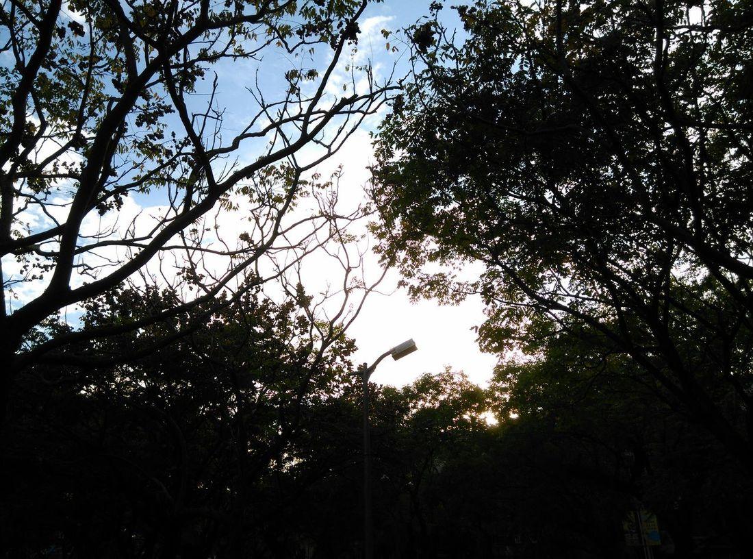 真希望天天都是這樣好天氣。 手機照生活 BenQ F5