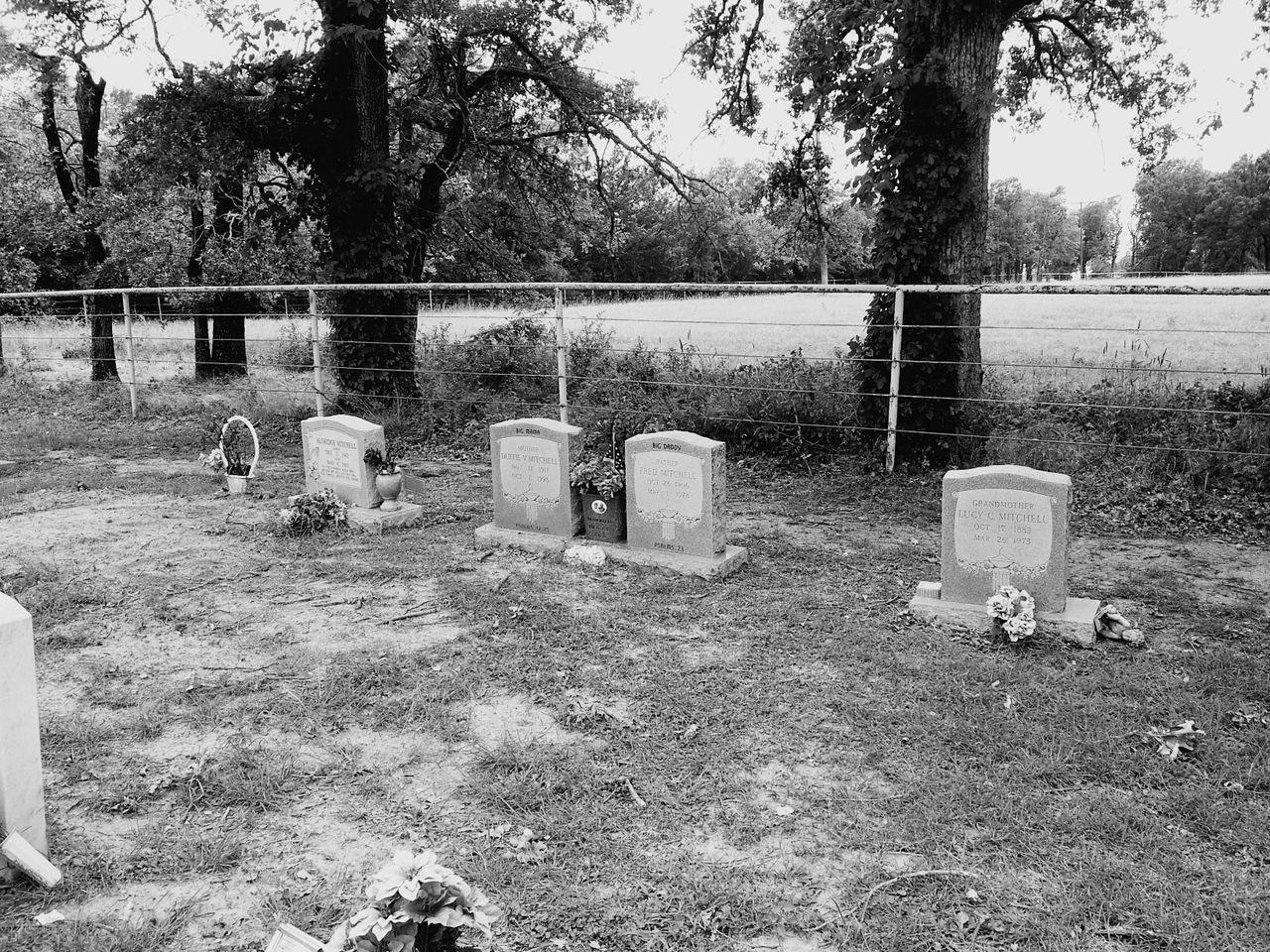 Final rest cemetery