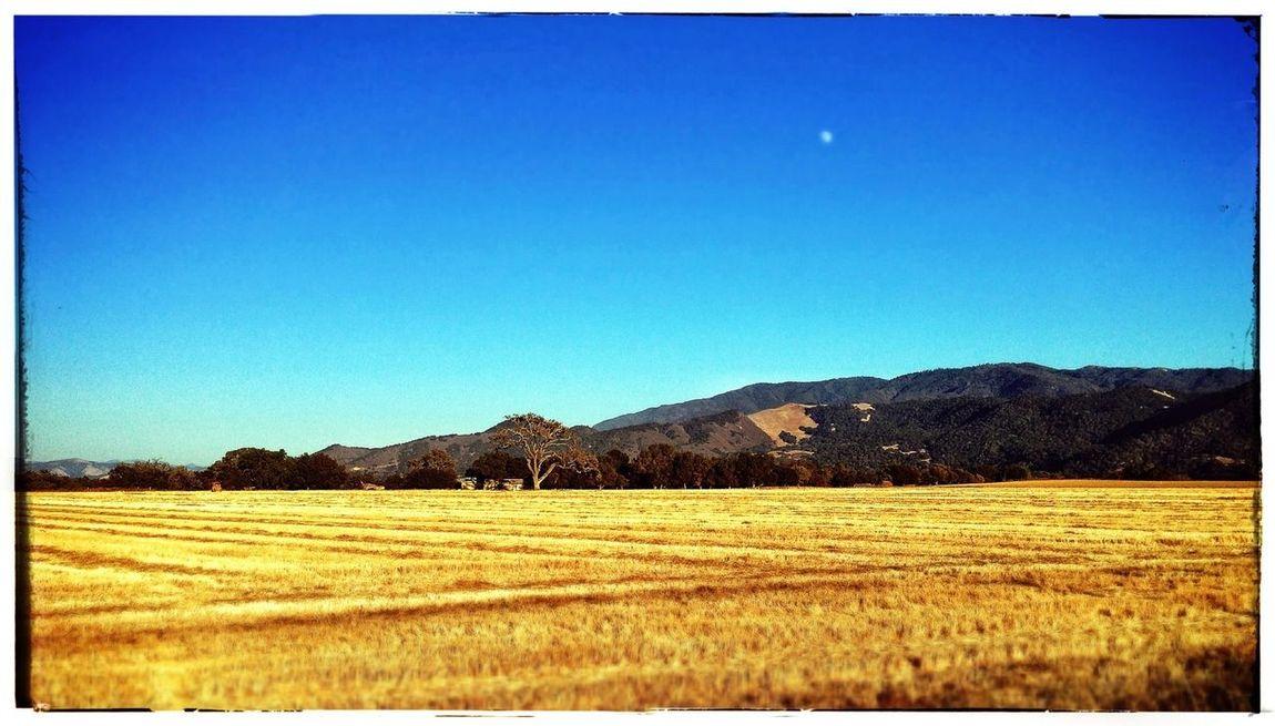 EyeEm Best Shots - Landscape Countryside