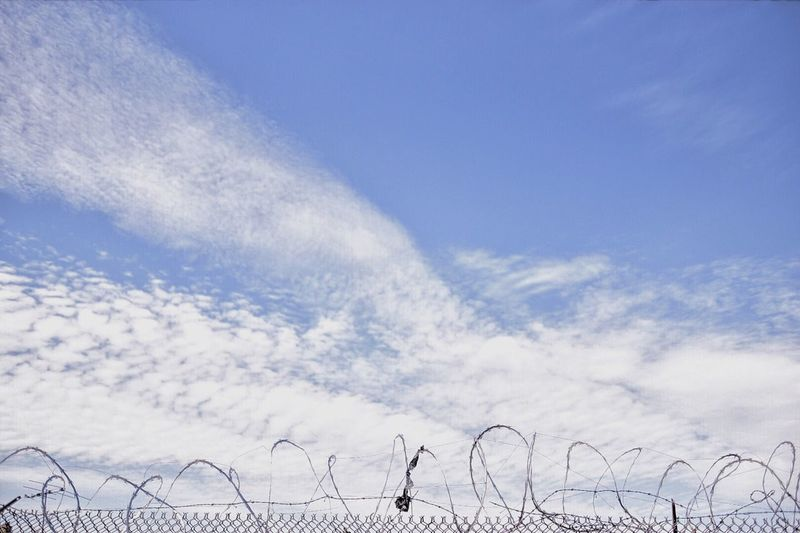 Sky Cloud Cloudscape Solitude No People Clouds Barbed Wire Trash Low Angle View Blue Day New York City New York Brooklyn