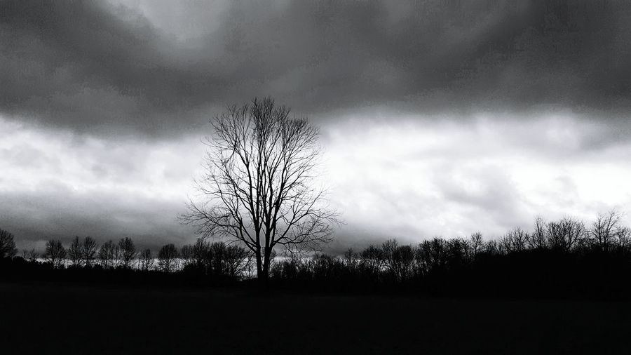 dark and beautiful. Dramatic Sky Storm Cloud Cloudscape No People Nature Tree