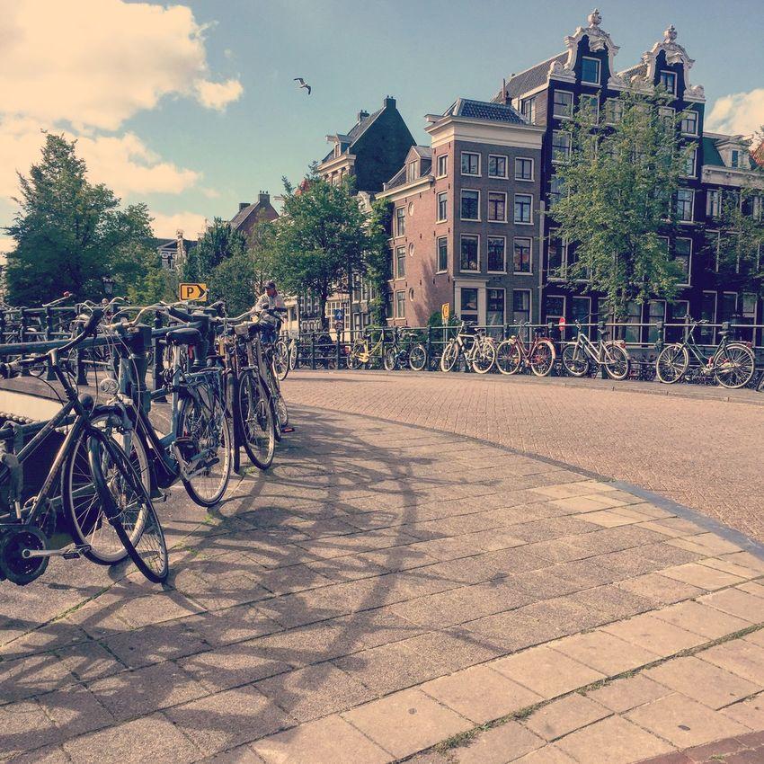 Bike Shadows on the Keizersgracht