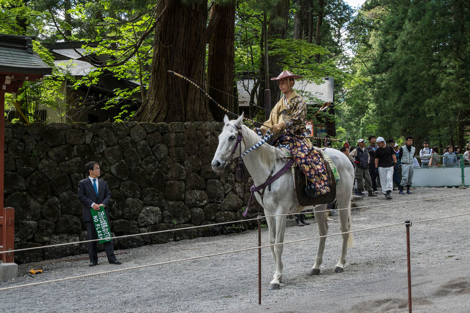 The winner of the yabusame tournament in 2014. Toshogu shrine, Nikko Archery Horse Japan Nikko Toshogu Shrine Warriors Yabusame Yumi