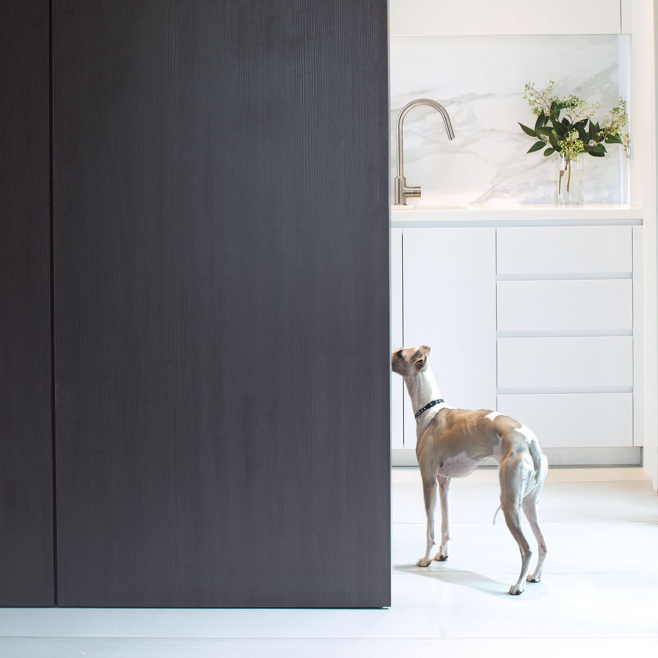 After months of renovating we're nearly finished. Kitchen Interior Interior Design Whippet Dog Sydneyphotographer Monochrome Marble Mono Minimal