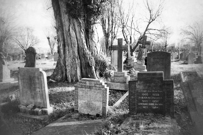 Graveyard Beauty Cemetery Darkart Dark Photography Photography Black&white Monochrome Blancoynegro Landscape Black And Light