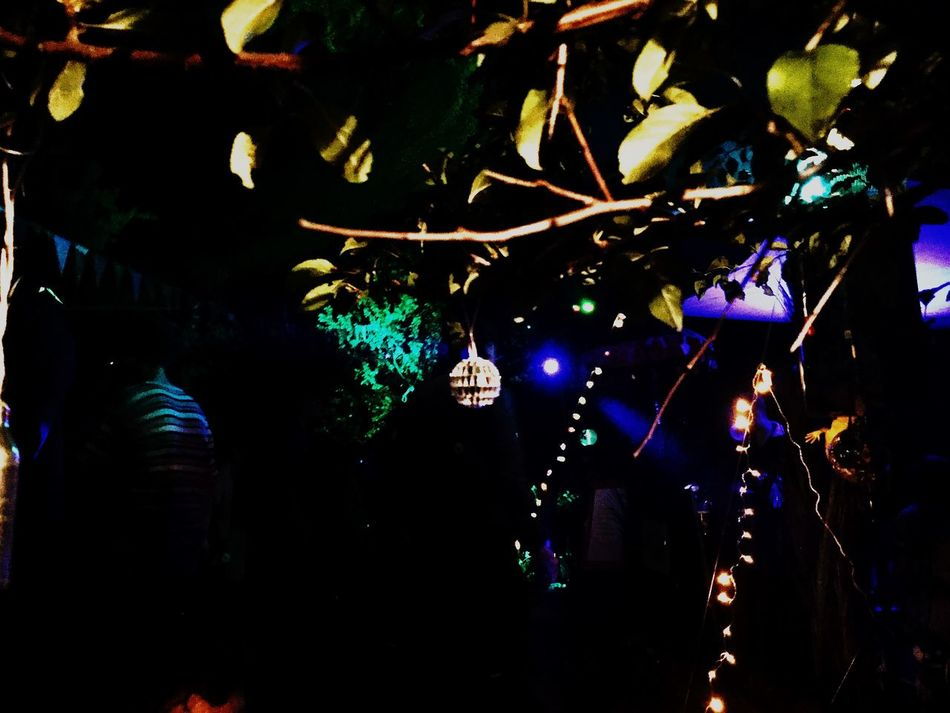 Music Fun Night Nightphotography Freitraum Open Air Disco Ball Color Light TreePorn