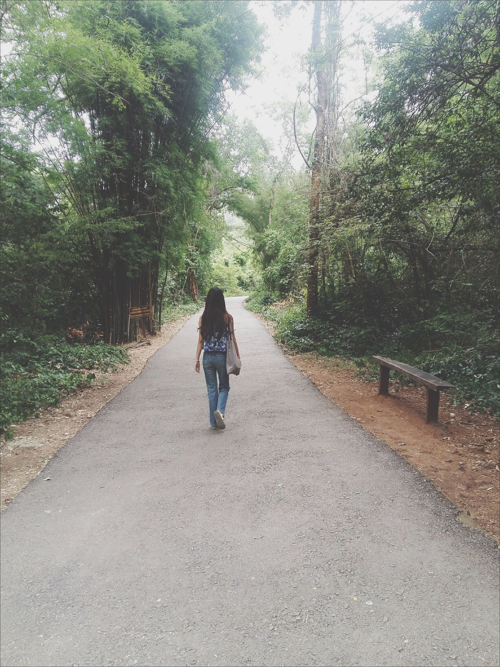 tree, the way forward, full length, lifestyles, road, leisure activity, diminishing perspective, vanishing point, casual clothing, day, growth, outdoors, nature, plant, country road, green color, tranquility, tranquil scene