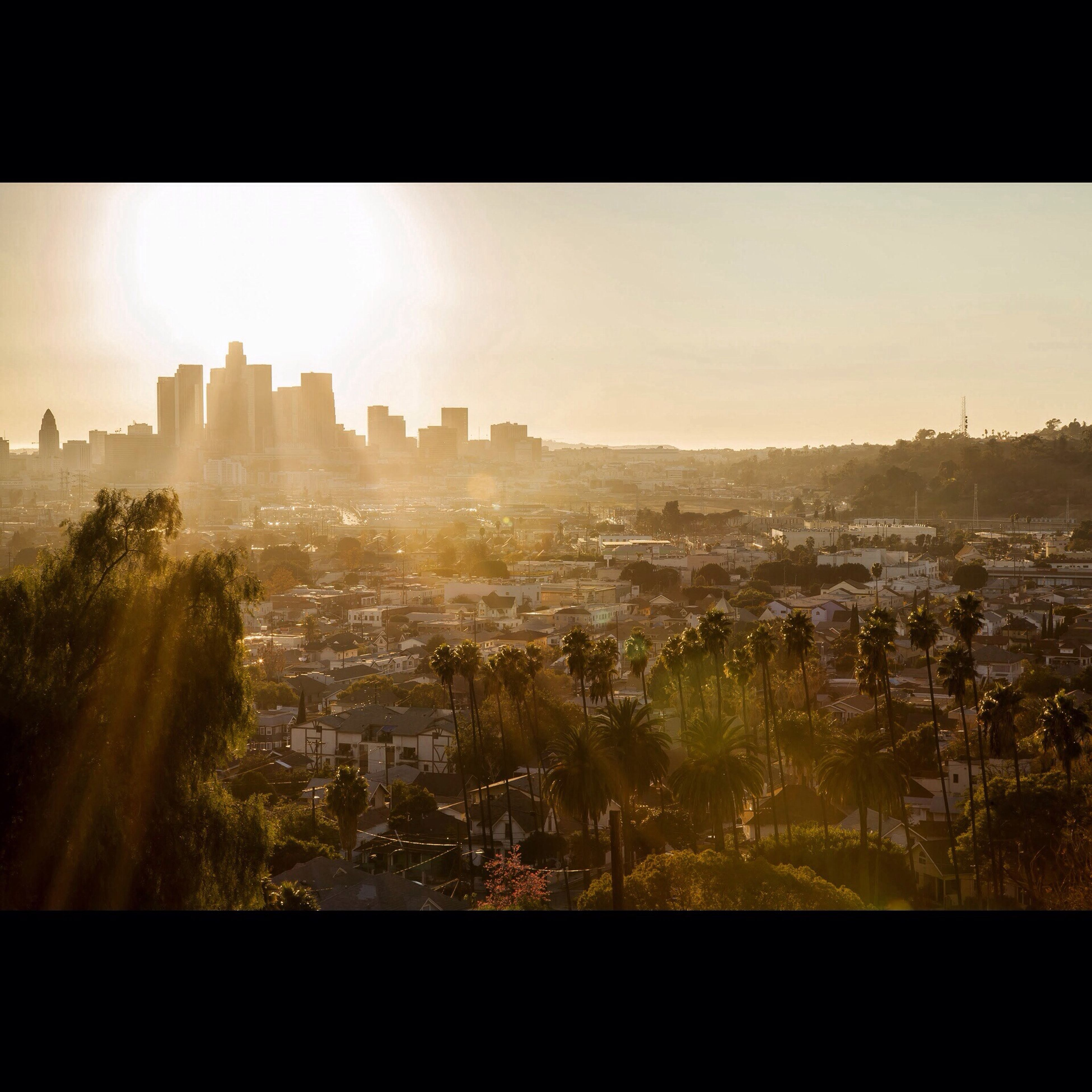 Angel's Halo DTLA Skyline Habitual Trespasser Los Angeles, California