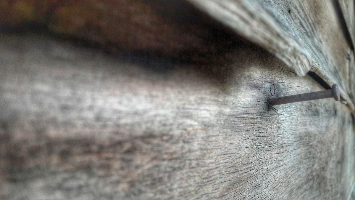 Nail Nails Wood Nature Wintage Bowns First Eyeem Photo