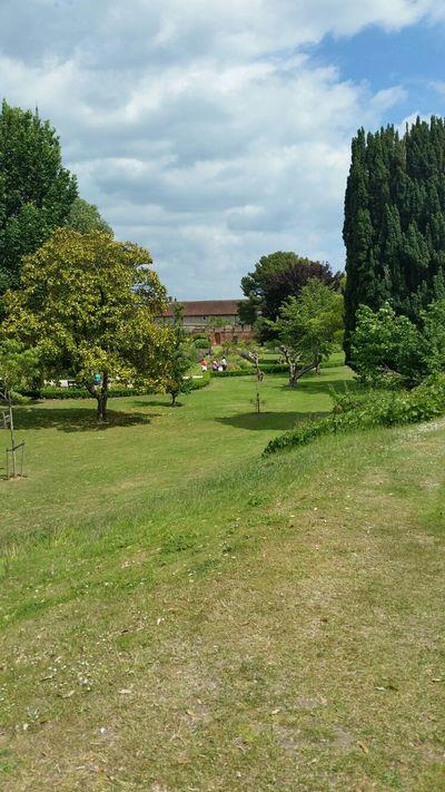 bishop gardens