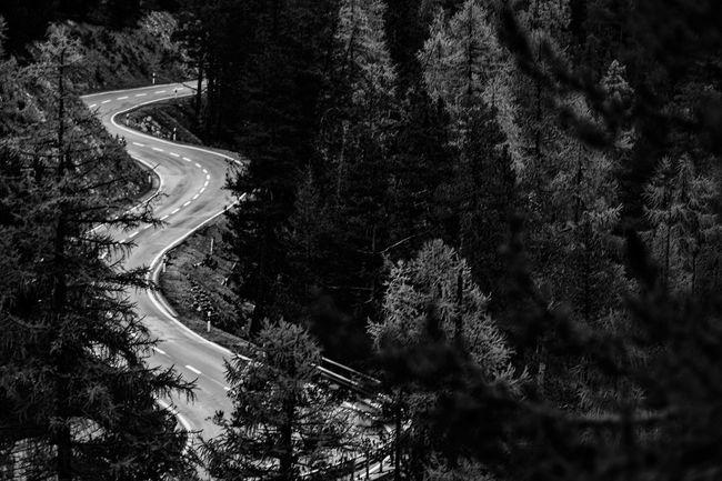 The Traveler - 2015 EyeEm Awards Monochrome Landscape Blackandwhite Nature Leica_camera Capture The Moment Stilfserjoch Q Landscapes With WhiteWall The Great Outdoors - 2016 EyeEm Awards