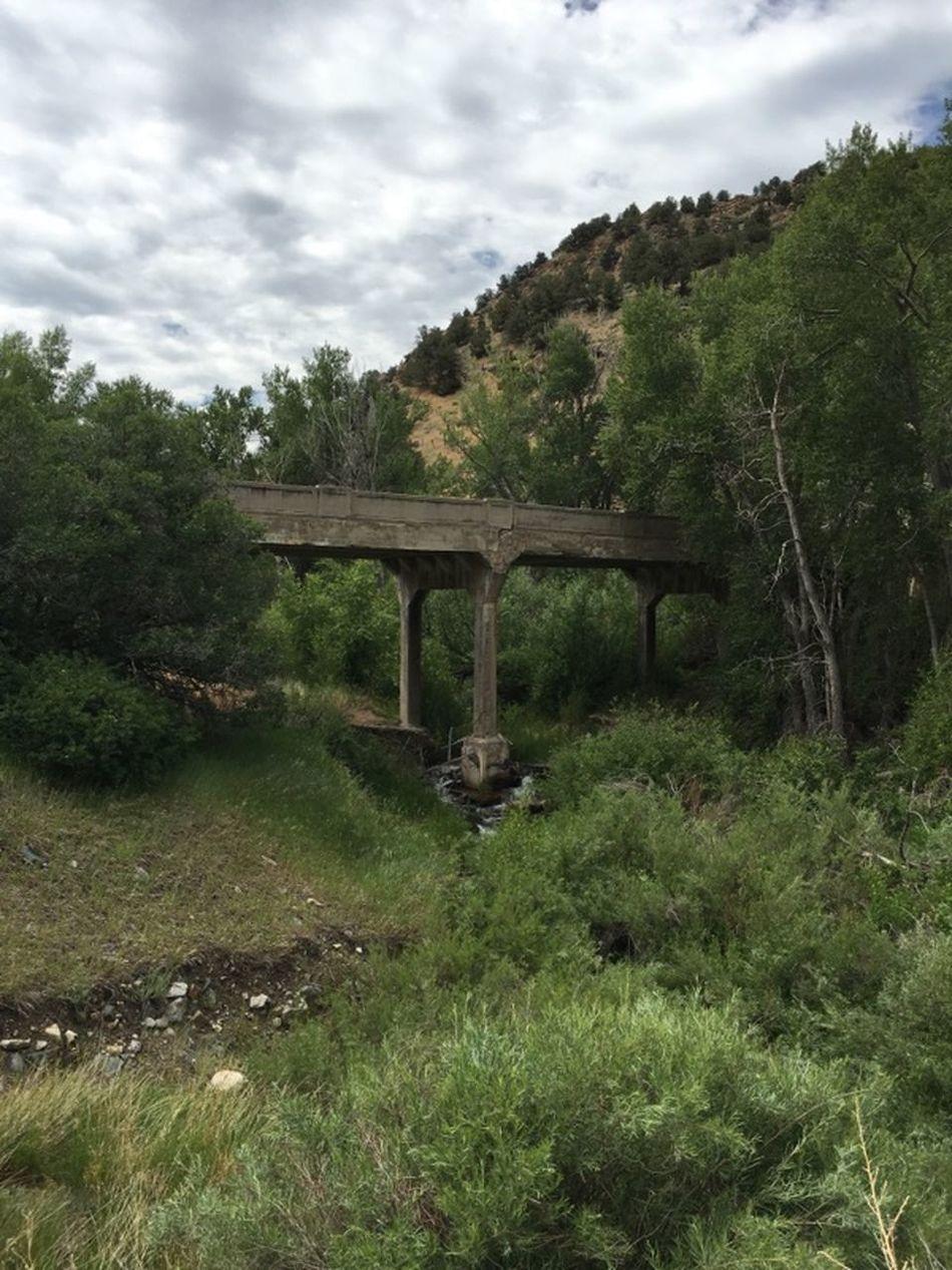 Old Bridge Abandoned Bridge The Lost Bridge Old Bridge A Creek Water Under The Bridge Trees Old Highway Bridge