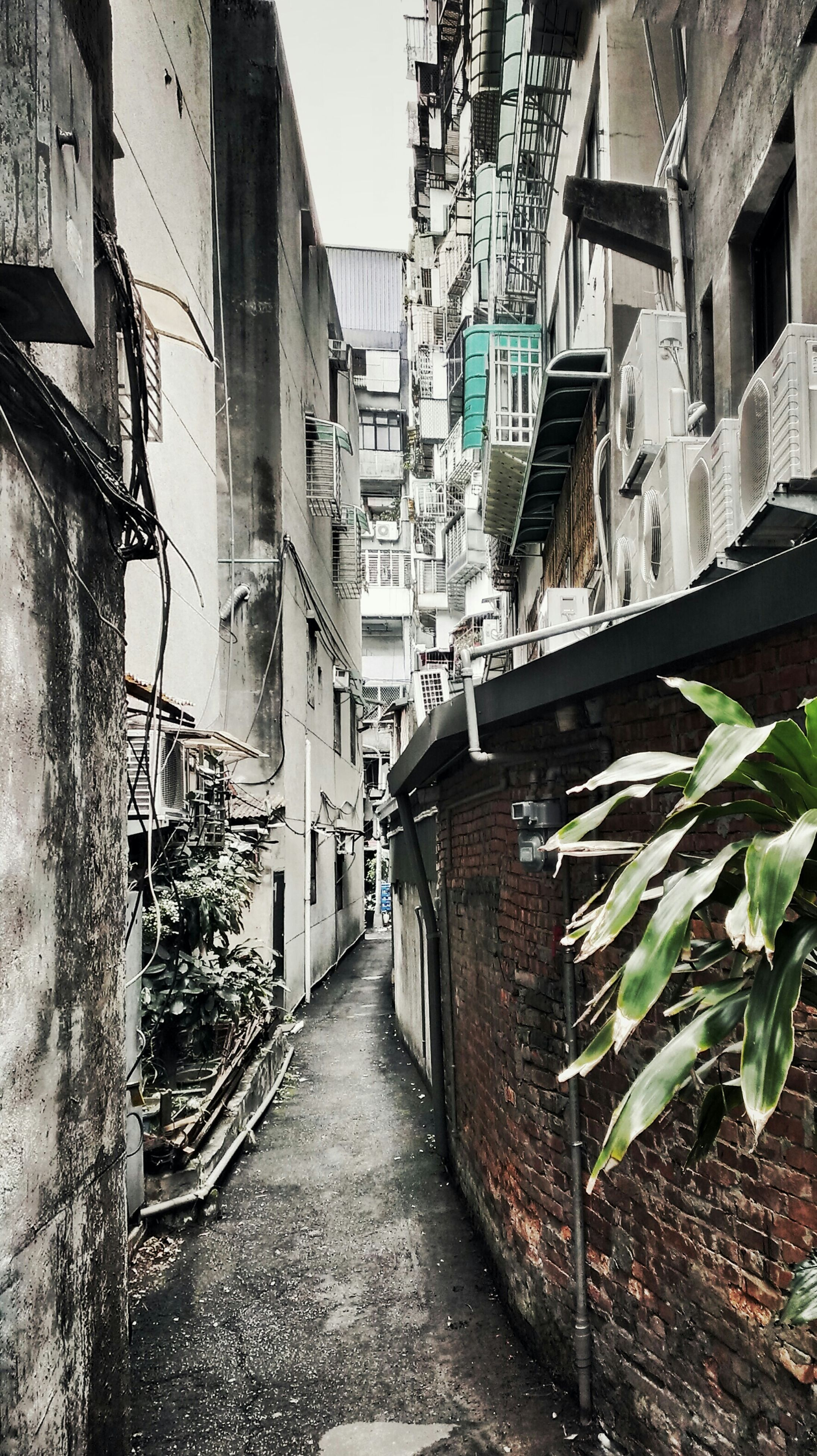 architecture, building exterior, built structure, the way forward, residential building, building, alley, residential structure, narrow, diminishing perspective, house, street, city, wall - building feature, vanishing point, day, window, wall, outdoors, no people