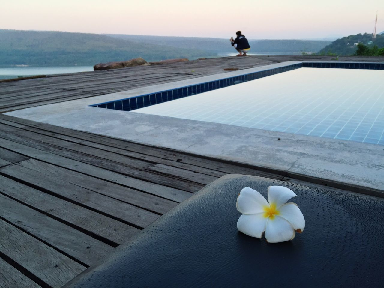 water, sea, nature, outdoors, beauty in nature, tranquil scene, day, tranquility, flower, real people, one person, horizon over water, sky, close-up, frangipani, freshness