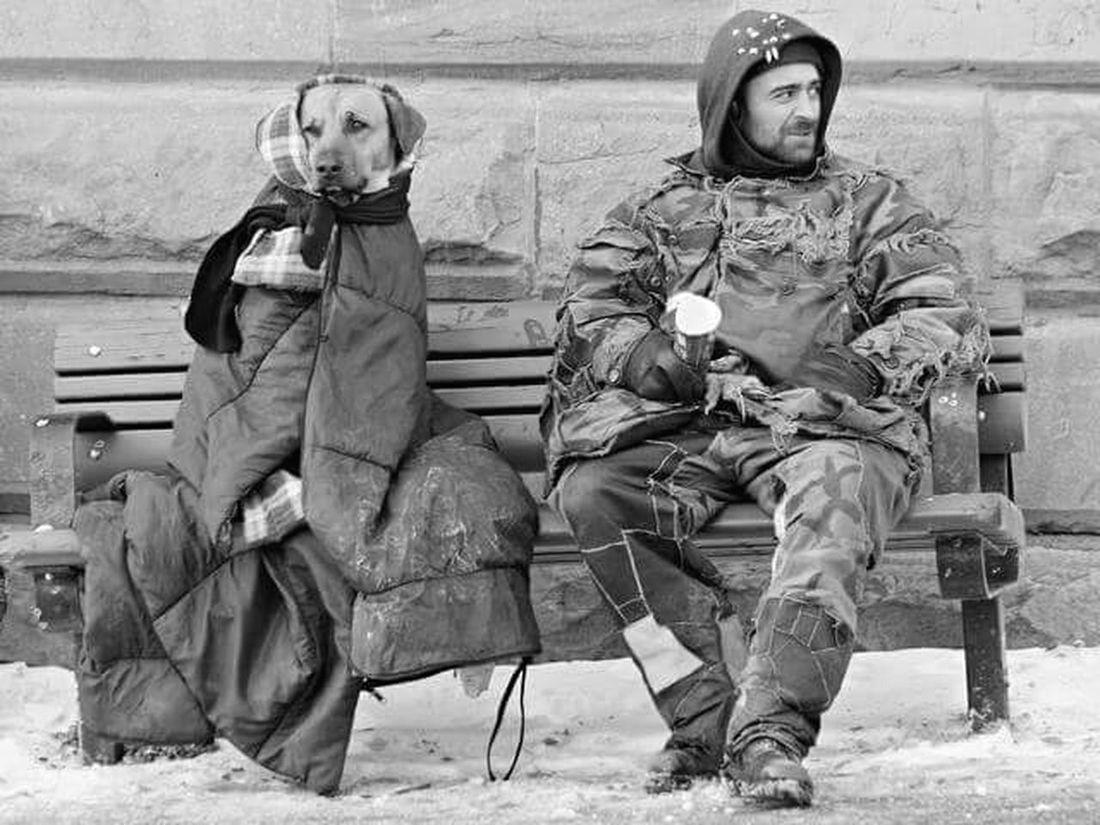 Dog And Human One Heart Photography Black & White Dog Life Man Sokakhayvanlarinikoruyun